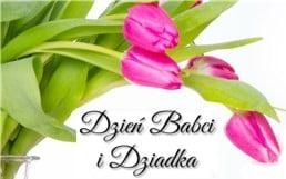 dzien_babci